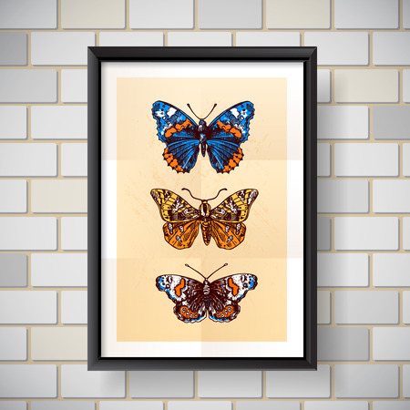 entomological: Beautiful hand drawn vector illustration sketching of butterflies. Boho style drawing. Use for postcards, print for t-shirts, posters, wedding invitation.