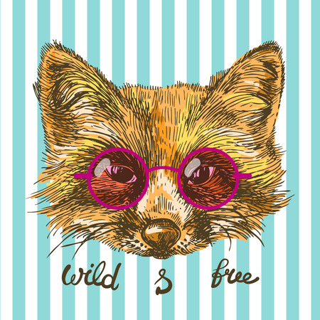 pelt: Beautiful hand drawn vector illustration sketching of fox. Tattoo style drawing. Use for postcards, print for t-shirts, posters. Illustration