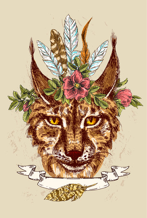 lynx: Beautiful hand drawn vector illustration sketching of lynx. Boho style drawing. Use for postcards, print for t-shirts, posters.