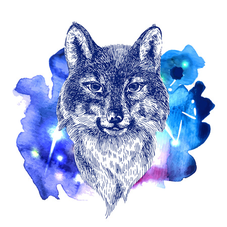 illustration sketching of wolf on  space watercolor background. Tattoo style drawing. Use for postcards, print for t-shirts, posters, case for smartphone