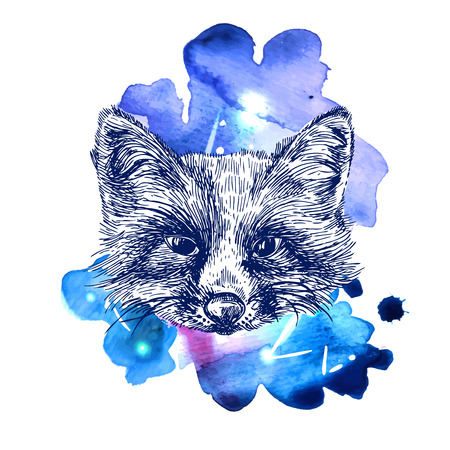 omnivore: illustration sketching of fox on space watercolor background. Tattoo style drawing. Use for postcards, print for t-shirts, posters, case for smartphone