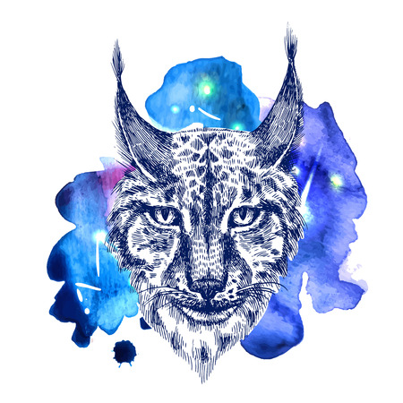tufted: illustration sketching of lynx on space watercolor background. Tattoo style drawing. Use for postcards, print for t-shirts, posters, case for smartphone