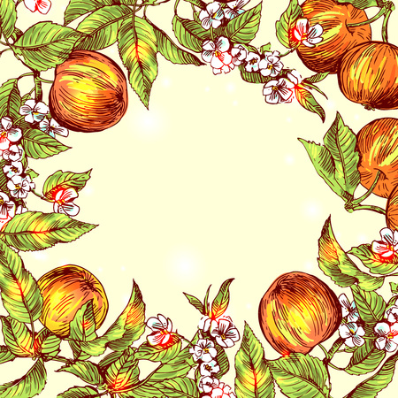 artsy: Beautiful hand drawn vector illustration sketching of apples. Boho style floral frame. Stock Photo