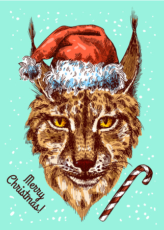 snarl: Illustration Christmas lynx. Drawing by hand. Sketch style. Illustration