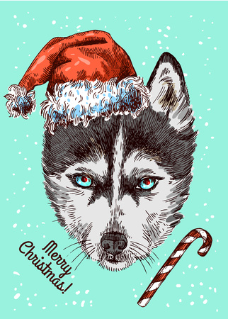 Illustration Christmas husky. Drawing by hand. Sketch style.