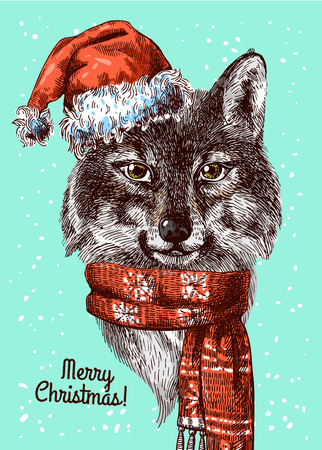 indium: Illustration Christmas wolf. Drawing by hand. Sketch style