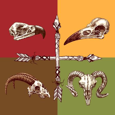Vector illustration croquis crâne d'animal. Dessin à la main. le style Boho. Utilisez des affiches, cartes postales, imprimer pour t-shirt, tatouage.