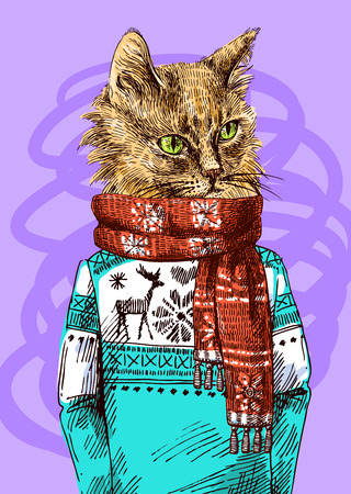 Cat in knitted sweater. Vector illustration for greeting card, poster, or print on clothes. Fashion Style drawing. Hipster.