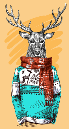 Deer in knitted sweater. Vector illustration for greeting card, poster, or print on clothes. Fashion Style drawing. Hipster. Illustration