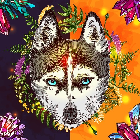Illustration with husky. Hand drawn vector background with wildflowers and crystall. Boho style drawing. Us for print for t-shirt smart phone poster web. Illustration