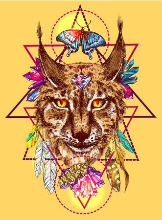 Illustration with lynx. Illustration