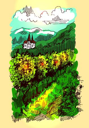 cypress: landscape with vineyard Illustration