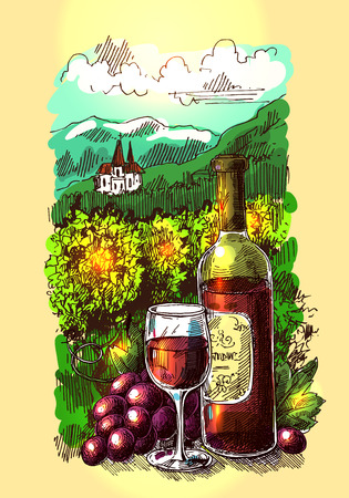 harvesting: illustration with wine