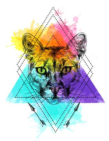 mountain lion sketch illustration