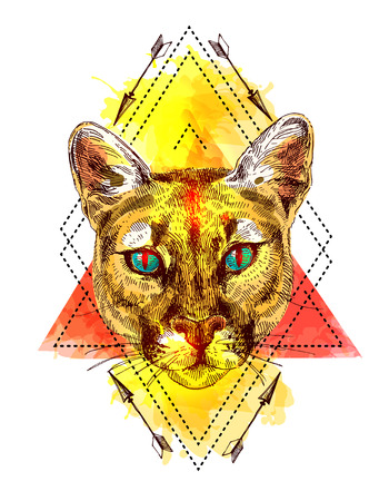 puma: puma sketch illustration