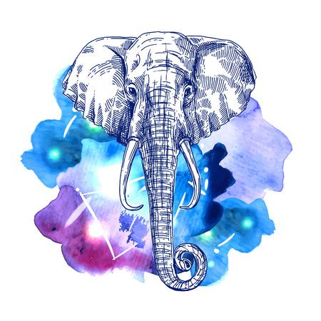 Illustration portrait of elephant