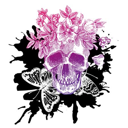 sketch illustration the skull