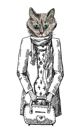 Cat fashion look.