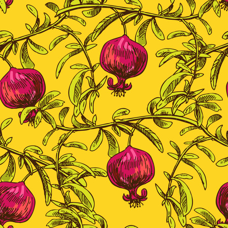 Hand drawn vector seamless pattern with pomegranate.