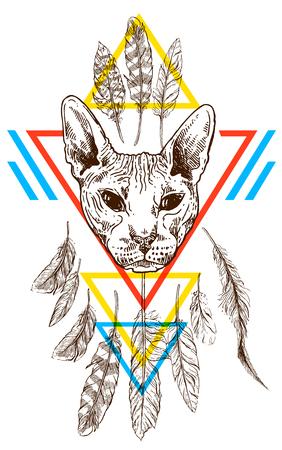 sketch portrait of bald cat Illustration