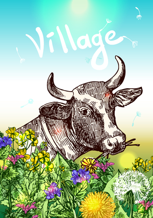 Beautiful hand drawn illustration head of cow and wildflowers. Sketch style. Use for poster; tattoo; print t-shirt.