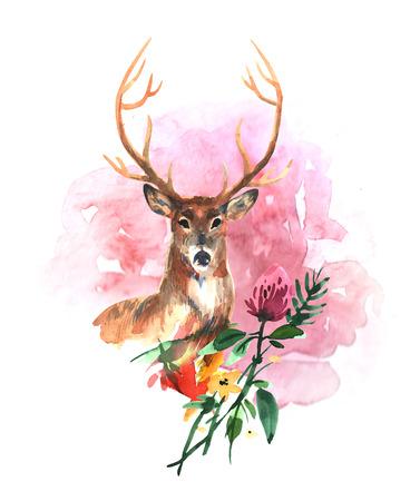 watercolor illustration deer Stock Photo