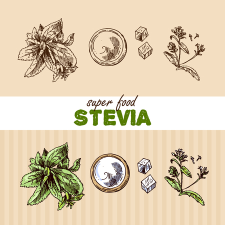 Hand drawn vector illustration superfoods. Sketch style drawing.  Us for Invitations, flyers, postcards, menu etc Illustration