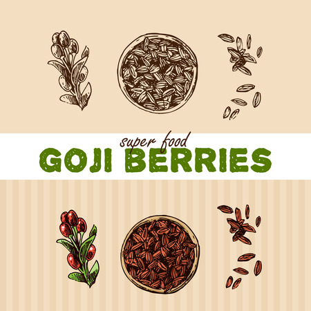 Hand drawn vector illustration of super foods. Sketch style drawing. Can be used for Invitations, flyers, postcards, menu etc Illustration