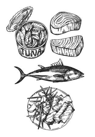 Illustration vectorielle de thon croquis. Ensemble d'images dessinées à la main avec du poisson.