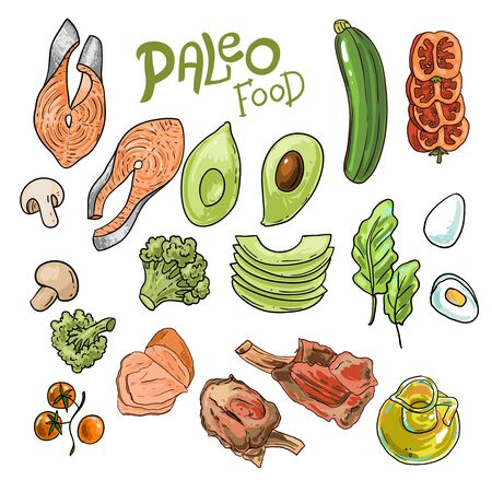 Paleo food illustration. Hand drawn vector picture