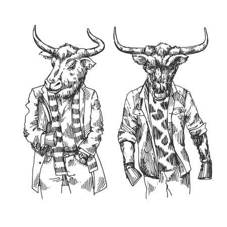 Dressed bull. Hand drawn beautiful vector illustration.