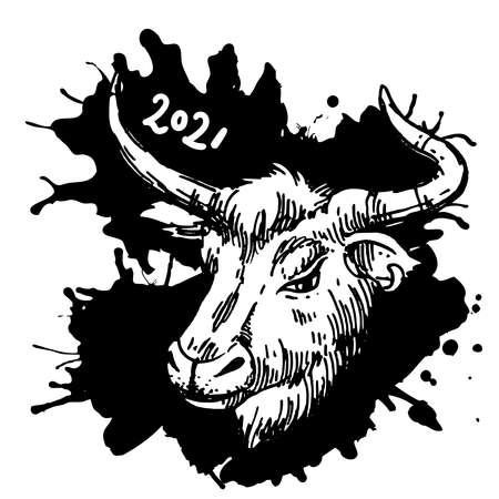 Head of bull. Hand drawn beautiful vector illustration.