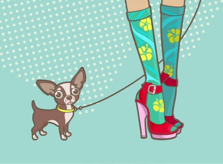high heels woman: lovely female legs and a little dog