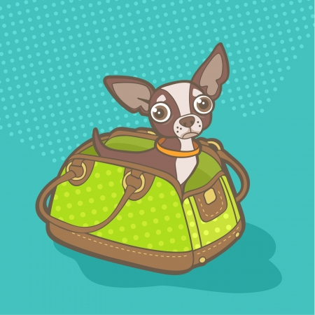 carriers: vector illustration with chihuahua sitting in bag