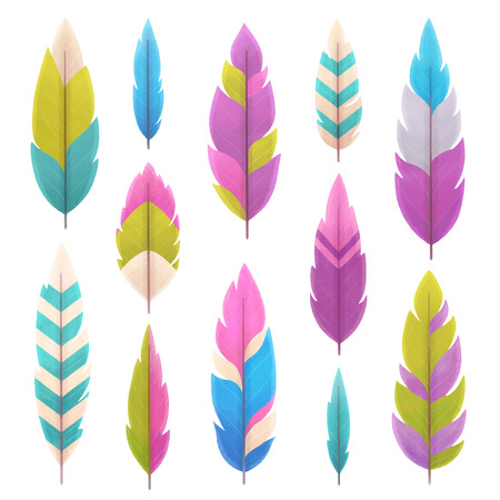 Set of feathers isolated on white background, illustration painting Stock Photo