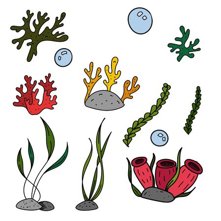 color vector elements set, black and white drawing of a marine inhabitant, doodle coloring, cute seaweed and corals