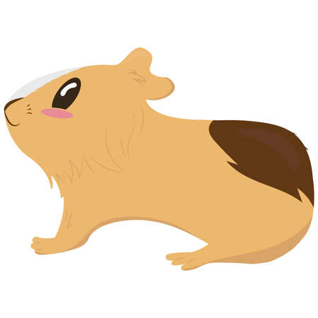 cute little tricolor guinea pig with a white stripe on the face, side view, cute domestic rodent, vector illustration in flat style
