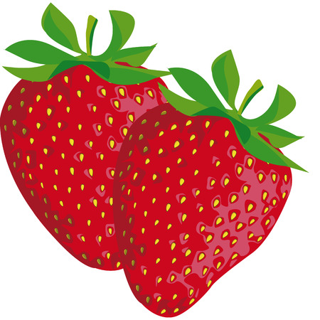 drawing of a strawberry with green leaves Stock Vector - 8019432