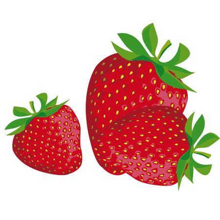 drawing of a strawberry with green leaves Stock Photo - 8019440