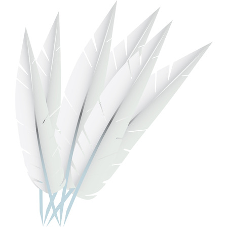 white goose feathers used to stuff pillows