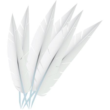 white pillow: white goose feathers used to stuff pillows