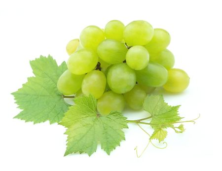 white grapes: Cluster of white grapes with a branch of leaves on a white background