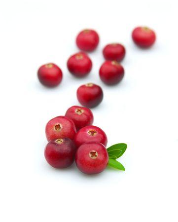 arandanos rojos: Ar�ndano rojo maduro y jugoso con una hoja sobre un fondo blanco