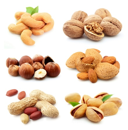 nut shell: Collection of nuts on a white background  Stock Photo