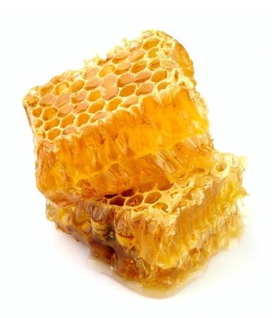 abejas panal: Panal cerca sobre el blanco