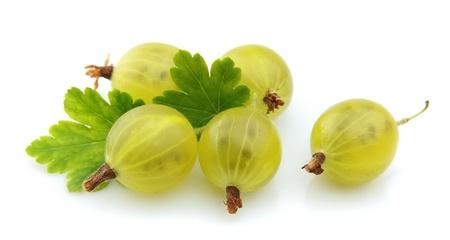 grosella: Grosellas con bayas de las hojas Foto de archivo