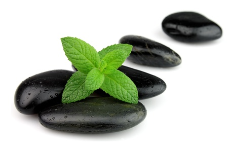 spearmint: Fresh mint on the stones with drops