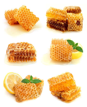 golden honey: Collection of honeycomb and honey Stock Photo