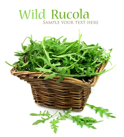 Wild rucola on white close up photo