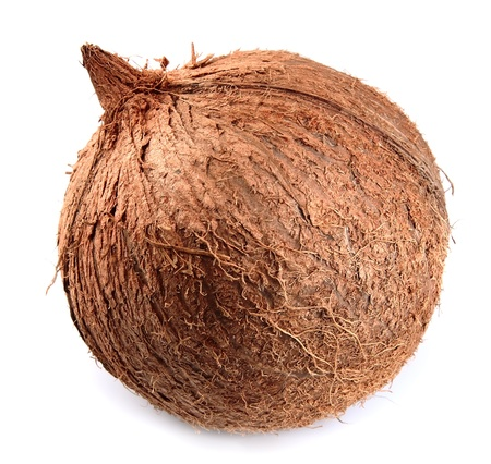 The whole coconut on a white background photo
